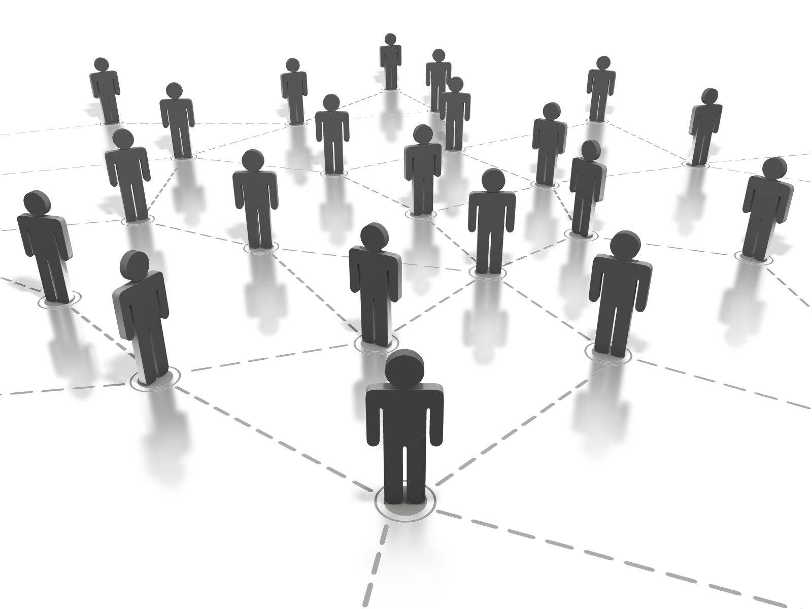 Business Network Internet Marketing Services Tt